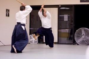 Shinkage Japanese Sword Martial Arts Training